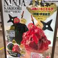 写真: 金シャチ横丁 宗春ゾーン:新メニューの「忍者氷」