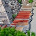 名古屋城:石垣調査用の足場を設置?(2018年6月17日) - 29