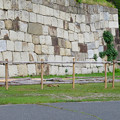 Photos: 名古屋城:東門近くに作られてた櫓(?) - 8