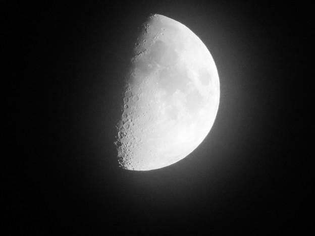 SX730 HSで撮影した半月(修正済み、モノクロ) - 1