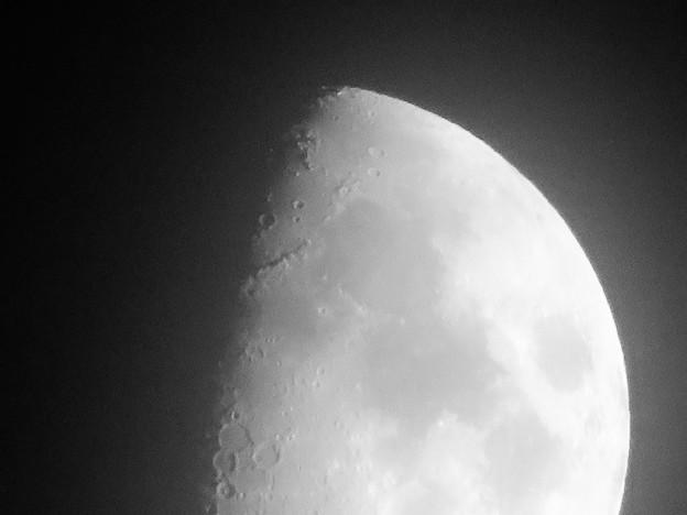 SX730 HSで撮影した半月(修正済み、モノクロ) - 6