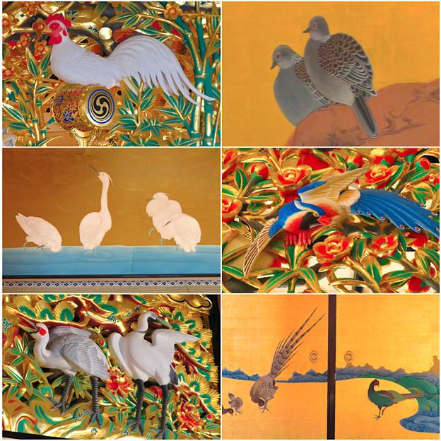 名古屋城本丸御殿の装飾に使われてる鳥 - 3