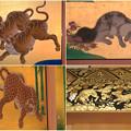 Photos: 名古屋城本丸御殿の装飾に使われてる動物