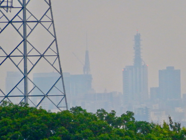 桃花台から見た名古屋テレビ塔とNTTドコモ名古屋ビル - 1