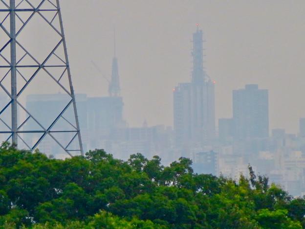 桃花台から見た名古屋テレビ塔とNTTドコモ名古屋ビル - 2