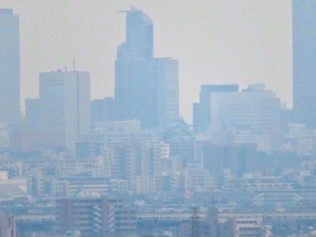 桃花台から見たスパイラルタワーズと名古屋城 - 1
