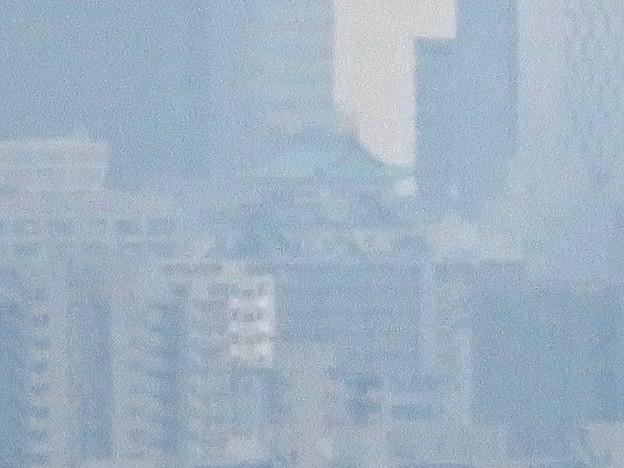 桃花台から見た名古屋城