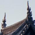 様々な角度から見た犬山城に新たに設置されたシャチホコ - 1