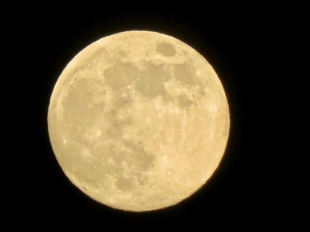 SX730HSで撮影した満月