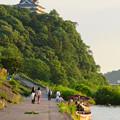 写真: 木曽川沿いから見た鵜飼い No - 6