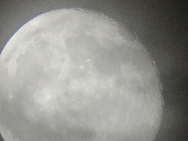 薄曇り越しに見た満月 - 1