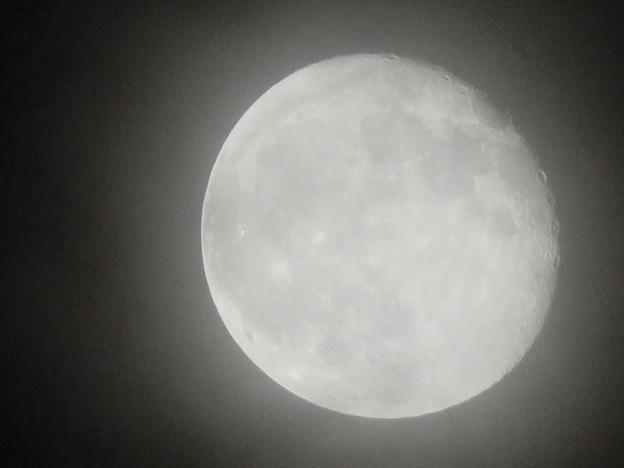 薄曇り越しに見た満月 - 3