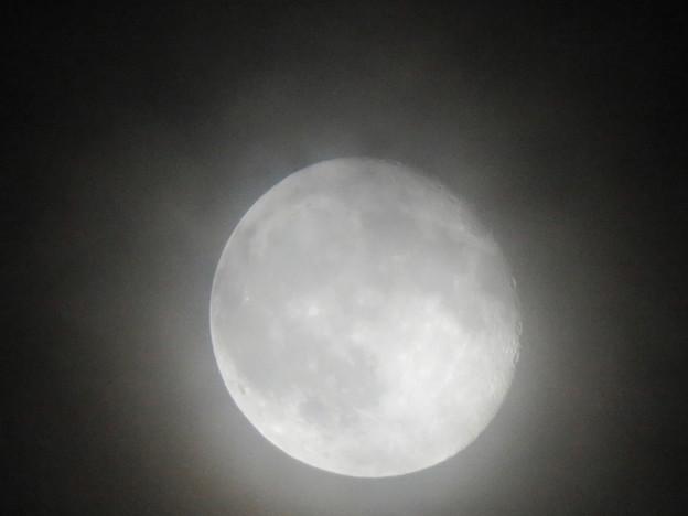 薄曇り越しに見た満月 - 4