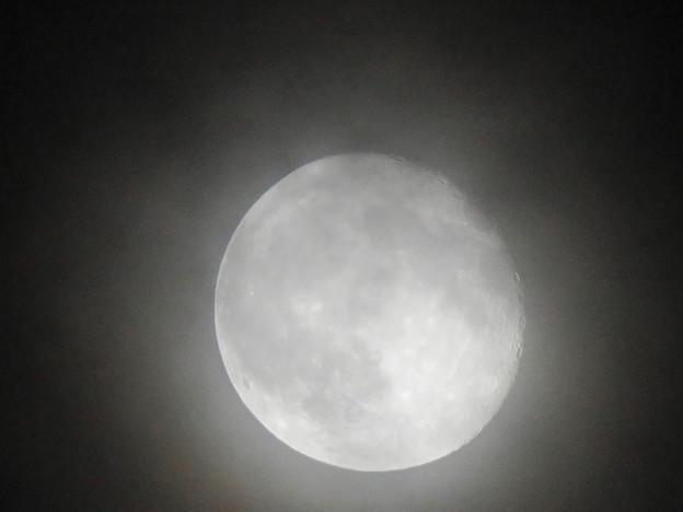 薄曇り越しに見た満月 - 5