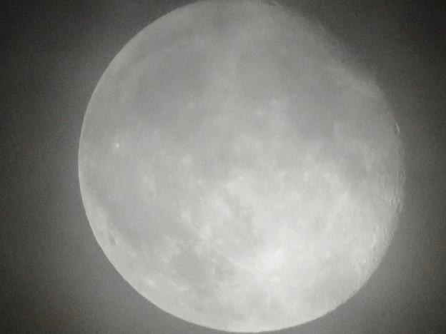 薄曇り越しに見た満月 - 6