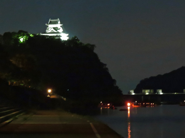木曽川沿いから見た鵜飼い No - 61