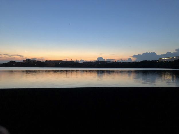 写真: 大池沿いから見た夕焼け - 1