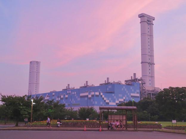 間近から見た中部電力 新名古屋火力発電所 - 4:ワイルドフラワーガーデン停留所