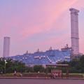 Photos: 間近から見た中部電力 新名古屋火力発電所 - 4:ワイルドフラワーガーデン停留所