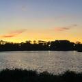 写真: 記録的な暑さの日の夕方の落合池 - 2
