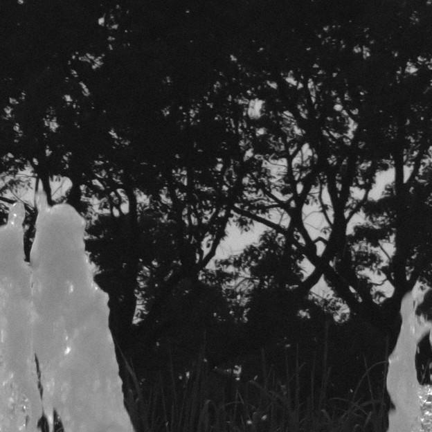 SX730HS:クリエイティブショットで撮影した写真 - 28(落合公園の噴水 その3)
