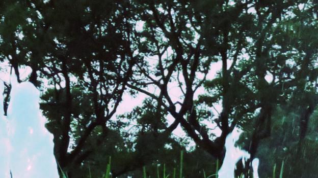 SX730HS:クリエイティブショットで撮影した写真 - 29(落合公園の噴水 その3)
