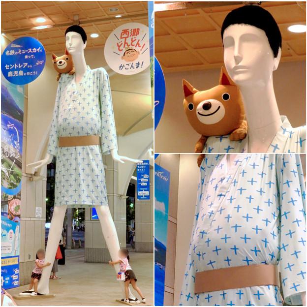 ナナちゃん人形:セントレア - 鹿児島間の航空路線開通をPR - 15