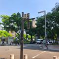 Photos: 光化学スモッグで薄っすら曇ってる感じがした名古屋栄(2018年8月4日)