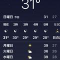 写真: 深夜1時なのに「31℃」!?(2018年8月6日、小牧市)