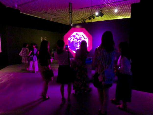 アートアクアリウム展 2018 No - 110