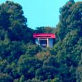 Photos: 桃花台ニュータウンから見た尾張白山神社 - 2
