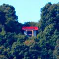 桃花台ニュータウンから見た尾張白山神社 - 4