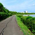 写真: 愛知池 No - 7:池沿いのランニングコース
