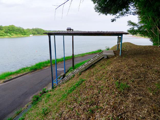 愛知池 No - 10:謎の階段