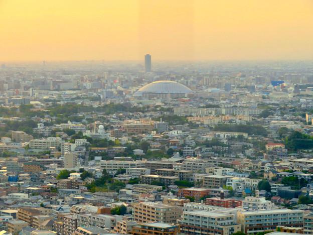 東山スカイタワーから見た景色:ナゴヤドームとザ・シーン城北 - 3
