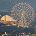 東山スカイタワーから見た景色:愛・地球博記念公園の大観覧車