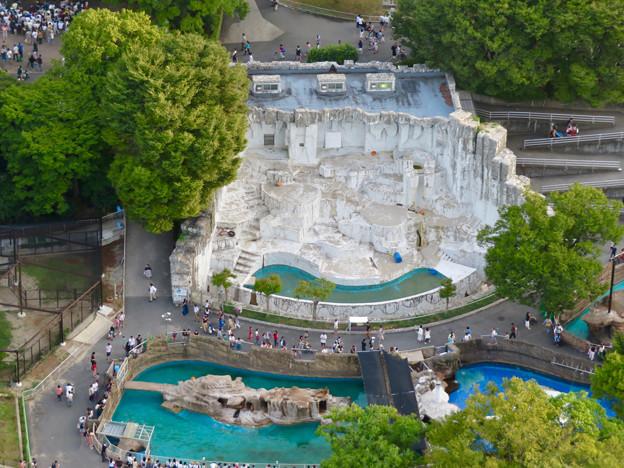 東山スカイタワーから見た景色:東山動植物園のホッキョクグマ舎 - 1