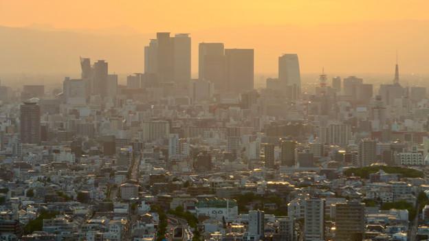 東山スカイタワーから見た景色:名駅ビル群 - 4