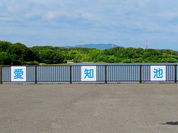 愛知池 No - 48