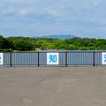 写真: 愛知池 No - 48