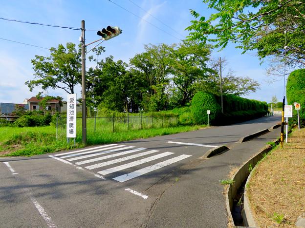 愛知池 No - 60:愛知池漕艇場の看板