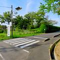 写真: 愛知池 No - 60:愛知池漕艇場の看板
