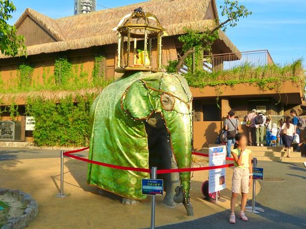 東山動植物園ナイトZoo 2018 No - 4:スリランカのお祭り「ペラヘラ祭」風の装飾がなされてたゾージアム前の象の像