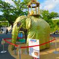 Photos: 東山動植物園ナイトZoo 2018 No - 6:スリランカのお祭り「ペラヘラ祭」風の装飾がなされてたゾージアム前の象の像