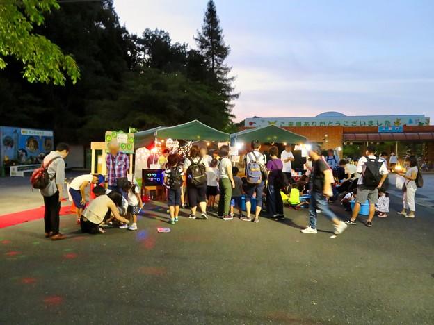 東山動植物園ナイトZoo 2018 No - 38