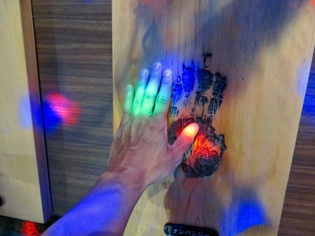 東山動植物園ナイトZoo 2018 No - 41:チンパンジーとの手形