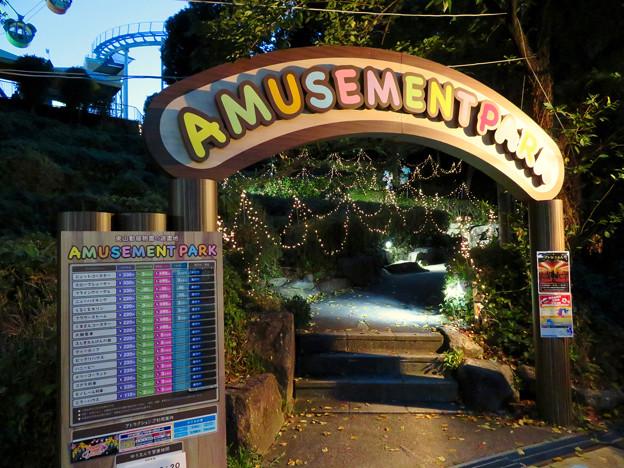 東山動植物園ナイトZoo 2018 No - 43