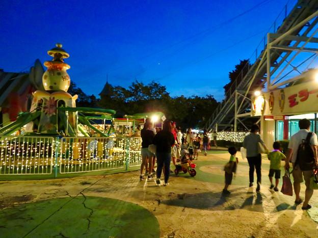 東山動植物園ナイトZoo 2018 No - 48:夜の遊園地