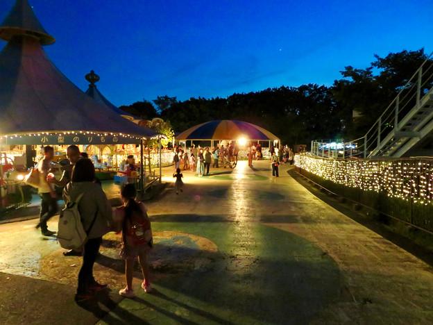 東山動植物園ナイトZoo 2018 No - 49:夜の遊園地