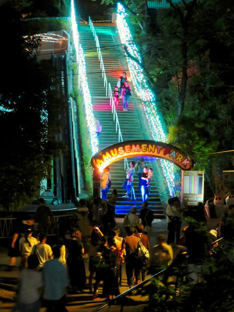 東山動植物園ナイトZoo 2018 No - 51:遊園地へと続く階段のイルミネーション